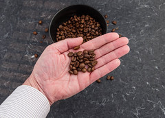 Coffee beans in palm of hand (annick vanderschelden) Tags: coffee bean coffeebeans brewer flavour roasted intense solid fiery espresso refined aroma taste colour seed pit caffeine beverage alkaloid proteins carbohydrates endosperm arabica belgium