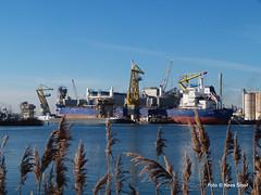Mercuriushaven 19-1-19 (k.stoof) Tags: mercuriushaven westpoort amsterdam haven harbor harbour port industrie industry schip ship