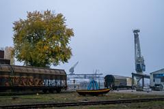 Karlsruher Rheinhafen (KaAuenwasser) Tags: karlsruher rheinhafen karlsruhe kran wasser rhein binnenhafen schifffahrt anlegestelle schienen lok wagon historisch baum bäume nebel wetter himmel bewölkt herbst industrie gebäude haus