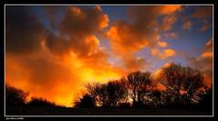Espoir.... (faurejm29) Tags: faurejm29 canon ciel campagne sigma sky nature paysage landscape