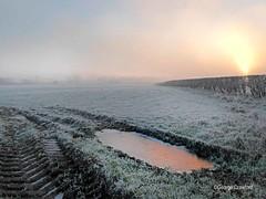 Glengarnock Frosty Puddle Sunset (g crawford) Tags: frost frosty winter wintery wintry cold weather sky skies garnock valley garnockvalley dalry glengarnock kilbirnie crawford puddle rut ruts reflect reflection sunset sundown misty mist fog foggy ayrshire northayrshire
