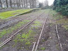Mogeely Station. (Fred Dean Jnr) Tags: corkyoughalrailway irishrail iarnrodeireann mogeely cork mogeelystationcork january2019