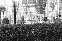 Día 437 (acido askorbiko) Tags: blackandwhite blacknwhite petanca people landscape landscapephotography landscapelovers landscapehunter landscapes photography photographer photographylover photographysouls placeswow killyourcity urban urbanandstreet urbex urbanphotography streetmagazine streetphotography streetshared canon7d canonphotography canonespaña canonusa noedit nofilters sinfiltros