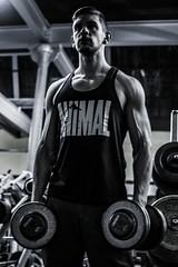 DSC_8873 (hixembg) Tags: fitness deporte gym bodybuilding culturismo training