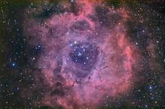 "Туманность ""Розетка"" , NGC2237, L(Ha)RGB (QNGW2WATGK3DNY35FFXMP6OUNM) Tags: astrophoto deepsky nebula ngc2237 туманность розетка астрофотография дальнийкосмос"