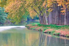 Canal du midi (jpto_55) Tags: canaldumidi eau automne fuji xt20 fujifilm fujixf55200mmf3548rlmois hautegaronne france