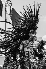 """Orgullo azteca"" (Alyaz7) Tags: nikond7200 lentenikonnikkorafs1855mm13556giidxvr rawquality blancoynegro blackandwhite culturamexicana mexicanculture danzaazteca dance retrato portrait asombroso amazing zócalo downtown ciudaddeméxico méxicocity penacho aigrette plumas feathers tradiciones costumes tatuajes tattoos fotografíacallejera streetphotography"