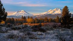 Three Sisters Sunrise (TierraCosmos) Tags: threesisters mountains snowypeak snowymountain sunrise morning winter centraloregon oregon sisters trees scenic landscape