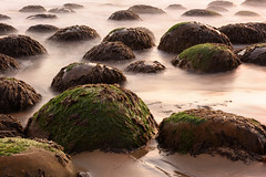 20150830_bowling_ball_beach_047 (petamini_pix) Tags: mendocinocounty california bowlingballbeach schoonergulch beach rocks rock rockformation longexposure silkywater seaweed seascape sea sand