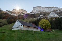Sunrise (SvenHoenisch) Tags: appenzellinnerrhoden berg europa europe hdr landschaft schweiz switzerland wanderung wasserauen hike hiking landscape landscapes mountain wandern weissbad kantonappenzellinnerrhoden sonnenaufgang sunrise sunrays sonnenstrahlen alpstein