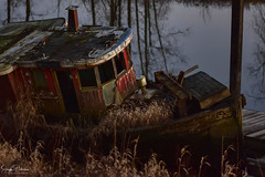 Nautical Decay - South Arm Alouette River (Explored) (SonjaPetersonPh♡tography) Tags: nikonafsnikkor85mmf18glens nauticaldecay shipwreck oldboat decay abandoned boat southarmalouetteriver alouetteriver pittmeadows bc britishcolumbia canada nikond5300 nikon river riverbank alouetteriverdykestrail dyke sunset dusk