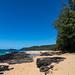Kauapea Beach Kauai Hawaii