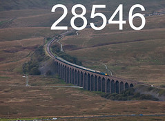 robfrance5d2_28546_290918_x55009_ribblehead_viaduct_1z82_drs_pre_edr16lr6pse15coefx4weblowres (RF_1) Tags: 2018 55 55009 britain british charter class55 d1825 dales delticnapier diesel directrailservices drs ee england englishelectric freight haulage hauling heritage loco locohauled locomotive locomotivehauled locomotives nucleardecommissioningauthority passengertrain preservation preserved publictransport rail railfreight railtour railroad rails railway railwayviaduct railways ribblehead ribbleheadviaduct rural sc settlecarlisle special train trains transport travel traveling uk unitedkingdom viaduct yorkshire