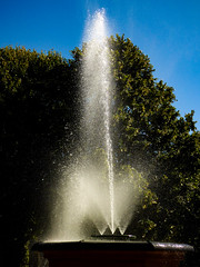 The Fountain's Spray (Steve Taylor (Photography)) Tags: blue green white water spray newzealand nz southisland canterbury christchurch cbd city trees leaves soft autumn bowkerfountain fountain victoriasquare
