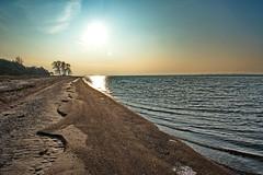 Sand (Wunderlich, Olga) Tags: sand bäume wasser landschaft strukturen licht sonne steine naturaufnahme landschaftsbild rügen insel mecklenburgvorpommern