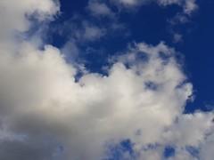 Beau nuage en Orthe et Arrigans (Marie-Hélène Cingal) Tags: cagnotte landes 40 ciel sky clouds nuages