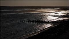Amrum Island - view of the North Sea (Ostseetroll) Tags: amrum deu deutschland geo:lat=5462597292 geo:lon=839982455 geotagged kniepsand schleswigholstein nordsee northsea olympus em5markii spiegelungen reflections