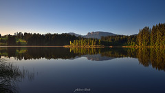 Summer's Almost Gone (PhotonenBlende) Tags: lake standingwater alps alpen reflection allgäu seeg mountainscape waterscape landscape silence morning sunrise forest mountains bavaria trees water mood idyllic fineart bluesky blue outdoor