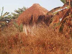 Granero. Aldea Holi. Benín (escandio) Tags: 2018 benin benin2018 holi aldea tribu benín