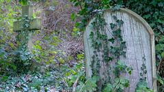 Arnos Vale (Brian Negus) Tags: ivy tomb victorian tombstone monument cross gravestone arnosvalecemetery cemetery bristol