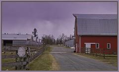 Fence Friday (robinlamb1) Tags: fencefriday barn buildings fence fences road farm cloudysky tree trees