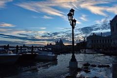 DSC_4676 copy (m.c.g.o) Tags: riva degli schiavoni venezia vento italy basilica di santa maria della salute san marco st marks square