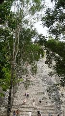2017-12-07_12-28-25_ILCE-6500_DSC03043 (Miguel Discart (Photos Vrac)) Tags: 2017 67mm archaeological archaeologicalsite archeologiquemaya coba e1670mmf4zaoss focallength67mm focallengthin35mmformat67mm holiday ilce6500 iso100 maya mexico mexique sony sonyilce6500 sonyilce6500e1670mmf4zaoss travel vacances voyage yucatecmayaarchaeologicalsite yucateque