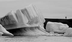 Alone With The Bergs (peterkelly) Tags: bw canon 6d europe iceland gadventures bestoficeland bird water person alone solitude ice berg jökulsárlónglacierlagoon