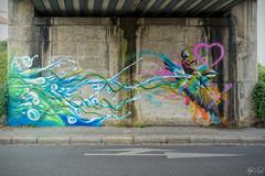 Graff by DAN23 ! (Steph Land) Tags: dan23 graff graffs graffiti spray sprayart artiste art artderue street streetart zeiss zeisslens carlzeisslenses carlzeiss peinture peintre caps aerosol