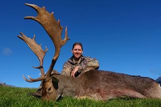 New Zealand Free Range Hunting - Marlborough 51