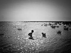 Zur Feier der Wintersonnenwende: ein Bild des Sommers (Maquarius) Tags: junge kind spiel hund schwarzes meer donau delta rumänien sfantu gheorghe sommer