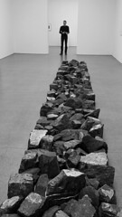 Chur '18 (faun070) Tags: chur buendnerkunstmuseum contemporaryart modernart alpineline richardlong jhk dutchguy tourist switzerland art