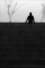 F_MG_6361-1-BW-Canon 6DII-Tamron 28-300mm-May Lee 廖藹淳 (May-margy) Tags: maymargy bw 黑白 人像 重複曝光 模糊 散景 枯樹 剪影 逆光 階梯 幾何構圖 點人 台灣攝影師 苗栗縣 台灣 中華民國 街拍 線條造與光影 天馬行空鏡頭的藝想世界 心象意象與影像 fmg63611bw portrait doubleexposure tree stairs streetviewphotography mylensandmyimagination linesformandlightandshadow naturalcoincidencethrumylens humaningeometry humanelement taiwanphotographer blur bokeh miaolicounty taiwan repofchina canon6dii tamron28300mm maylee廖藹淳