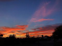 Turn Your Clock (oybay©) Tags: arizona sunset monsoon cloudy clouds saguaro cactus silhouette color colors nature natural orange yellow red purple outdoor sky dusk cloud city tree grass