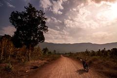 Track, Bolaven plateau, Laos (pas le matin) Tags: laos travel lao voyage road route track piste motorbike moto bike world landscape paysage perspective sky ciel clouds nuages sun soleil sunset coucherdesoleil tree arbre asia asie southeastasia canon 7d canon7d canoneos7d eos7d