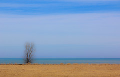 lost view (A. Wrench) Tags: tree field nature landscape spring sky clouds lake lakemichigan water horizon wisconsin bluff blue