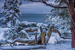 IMGP6699-Edit (jarle.kvam) Tags: winter tromøy snø norway norge arendal winterbeauty lighthouse torungen snow vinter raetnasjonalpark
