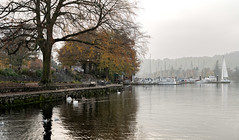 Lake Windermere Marina. (Durham George) Tags: windermere cumbria lakes boats swan water clouds