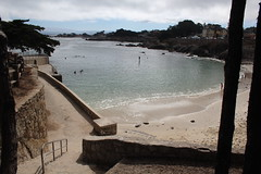 IMG_10921 (mudsharkalex) Tags: california pacificgrove pacificgroveca loverspointpark loverspointbeach beach
