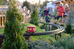 le vagon rouge (MarcBphotos) Tags: vagon wagon train rail miniature nature parc people enjoy warm merry noel christmas coccinelle beetle red