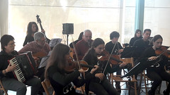 Concert d'hivern Intergeneracional  (11)