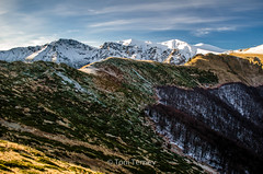 Singing Rocks (Peeshti Skali) - Balkan Mountain (Toni Terziev) Tags: 500px bulgaria beautiful balkan mountains mountain landscape landscapes home