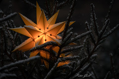 Waldweihnacht Erlangen, Stern im Tannenbaum 0760 (Peter Goll thx for +10.000.000 views) Tags: 2018 erlangen waldweihnacht baum weihnachtsbaum weihnachtsmarkt stern show weihnachten schnee tree nikkor christmas 28300mm nikon bayern deutschland de