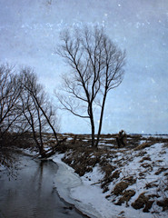 A January Thaw (Dave Linscheid) Tags: creek tree winter snow rural country texture textured watonwancounty mn minnesota usa picmonkey
