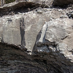 Limestone (Warix Run Member, Slade Formation, Upper Mississippian; Clack Mountain Road Outcrop, south of Morehead, Kentucky, USA) 4 thumbnail