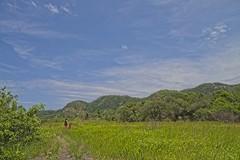 Joana e Diego na trilha (mcvmjr1971) Tags: yellow ilha do pontal piratininga lagoa nikon mmoraes d800e lens sigma 2435 art