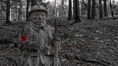 Fleury-devant-Douaumont - Nov 18 - 109 (sebwagner837_55) Tags: champs bataille verdun douaumont fleury fleurydevantdouaumont meuse lorraine grand est grandest poilu bois jean bergeron