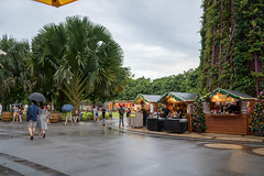 2018-12-Christmas-Wonderland_003 (laurenceputra) Tags: singapore christmaswonderland gardensbythebay lights night supertrees christmas wonderland