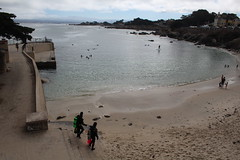 IMG_10922 (mudsharkalex) Tags: california pacificgrove pacificgroveca loverspointpark loverspointbeach beach
