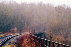 Falkenbach Viaduct (Bephep2010) Tags: 2018 7markiii aachen alpha bridge brücke bäume deutschland eisenbahnbrücke falkenbachviadukt germany ilce7m3 nrw nebel nordrheinwestfalen northrhinewestphalia sel85f18 sony viadukt winter fog railwaybridge trees viaduct ⍺7iii de